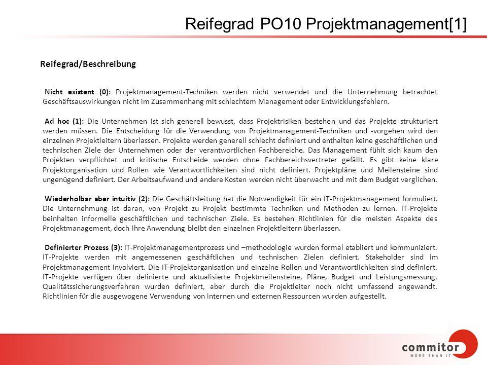 Reifegrad PO10 Projektmanagement[1]